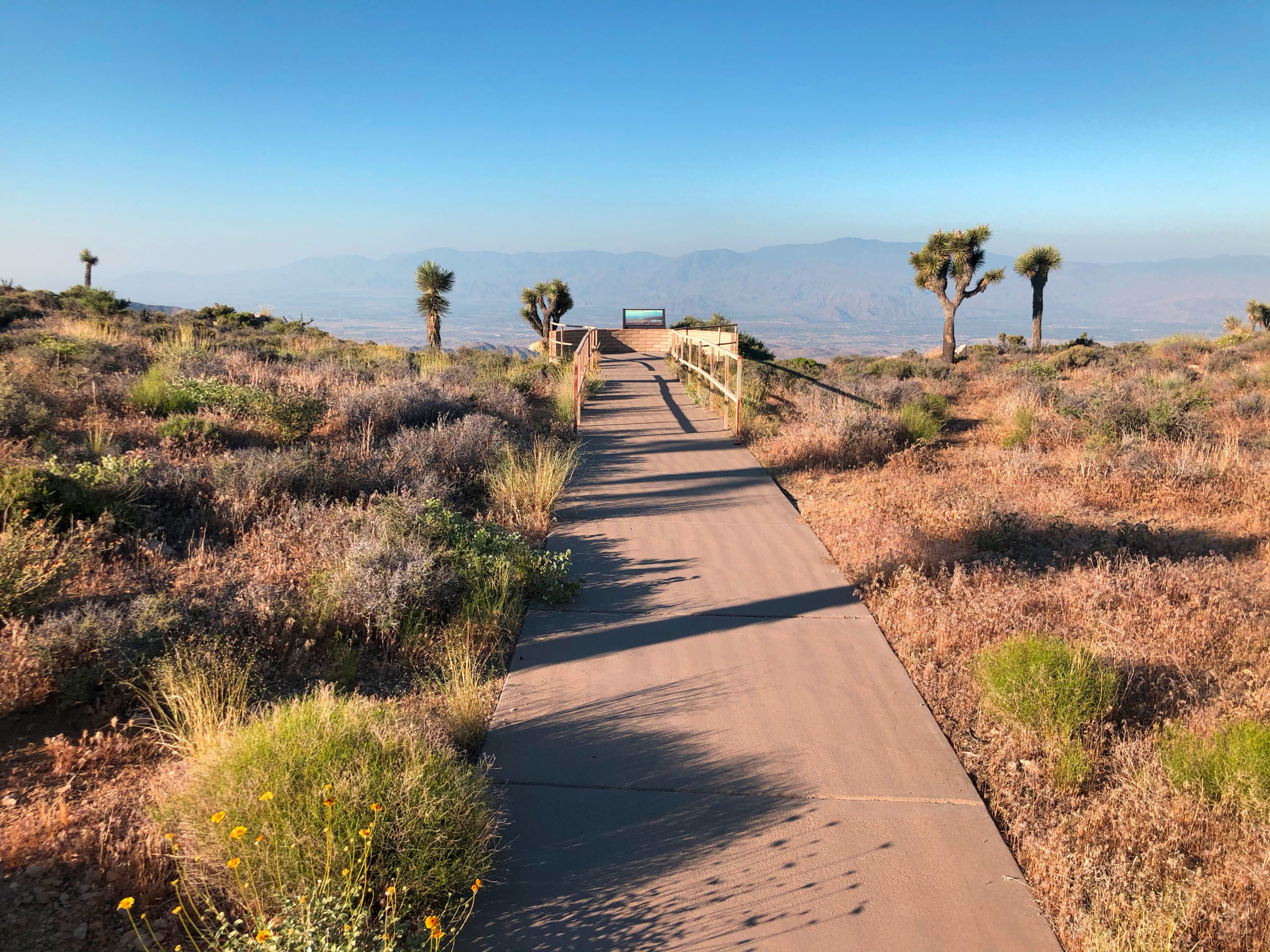 joshua-tree-national-park-adventure-tour-hiking-climbing-camping-ada-lookout-from-keys-view-2