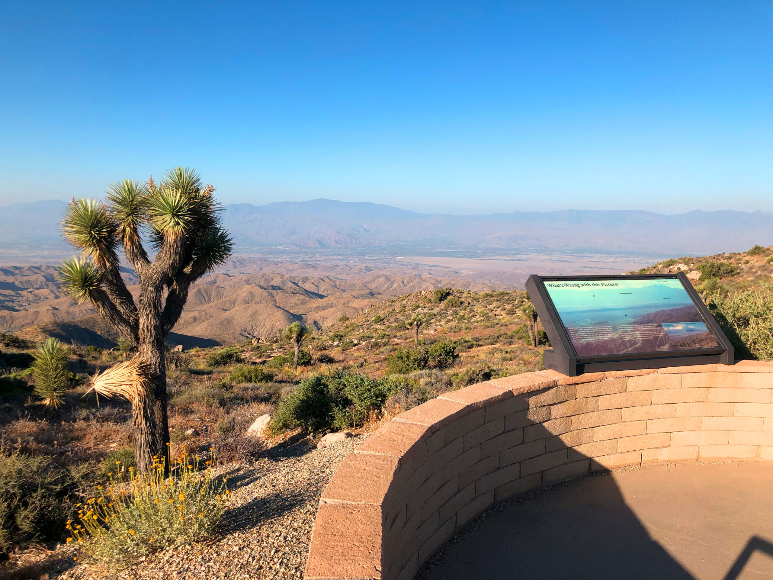 joshua-tree-national-park-adventure-tour-hiking-climbing-camping-ada-lookout-from-keys-view-3