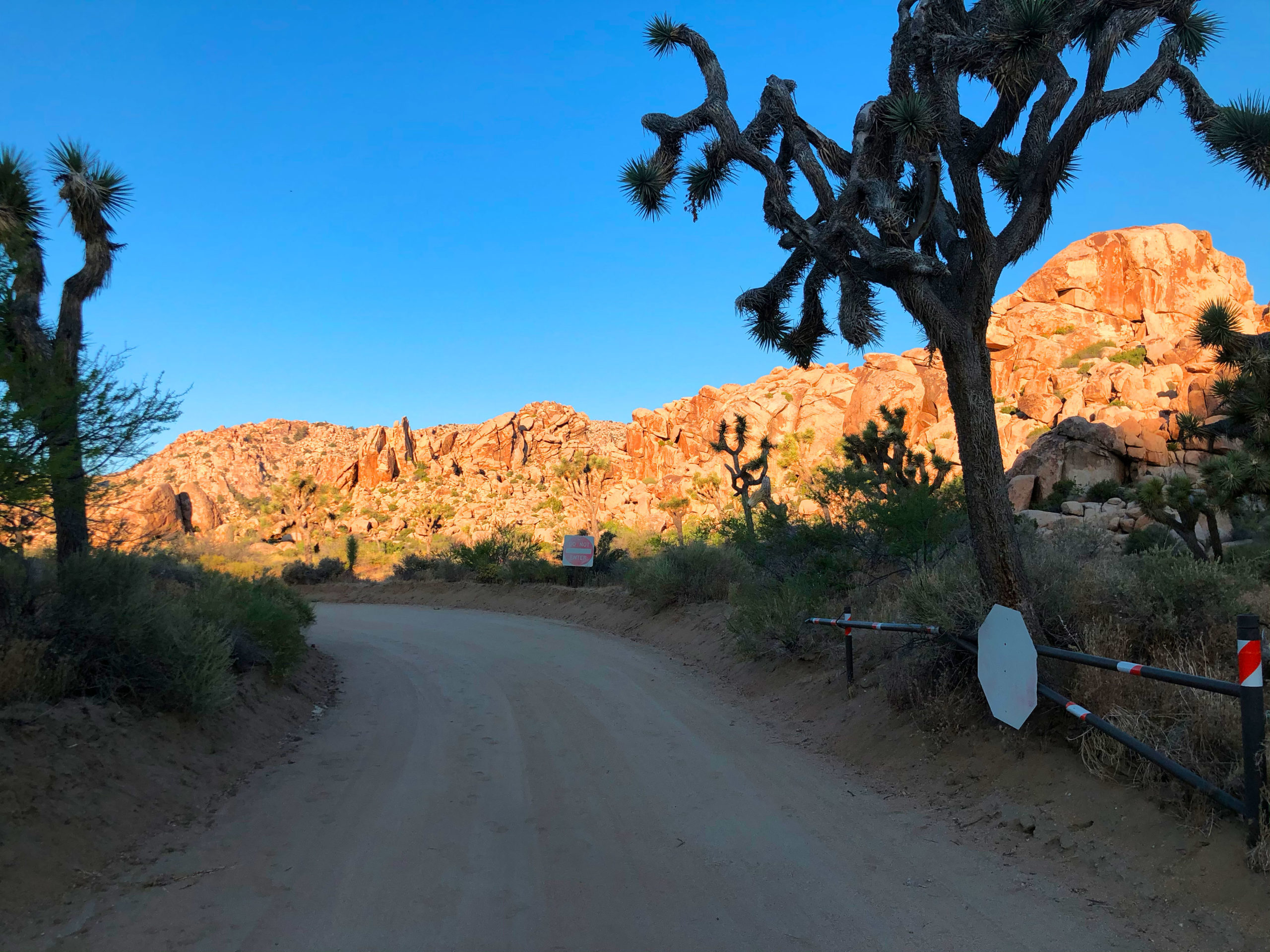 joshua-tree-national-park-climbing-camping-hiking-adventure-tour-lost-horse-ranger-station-locked-gate-ahead-2