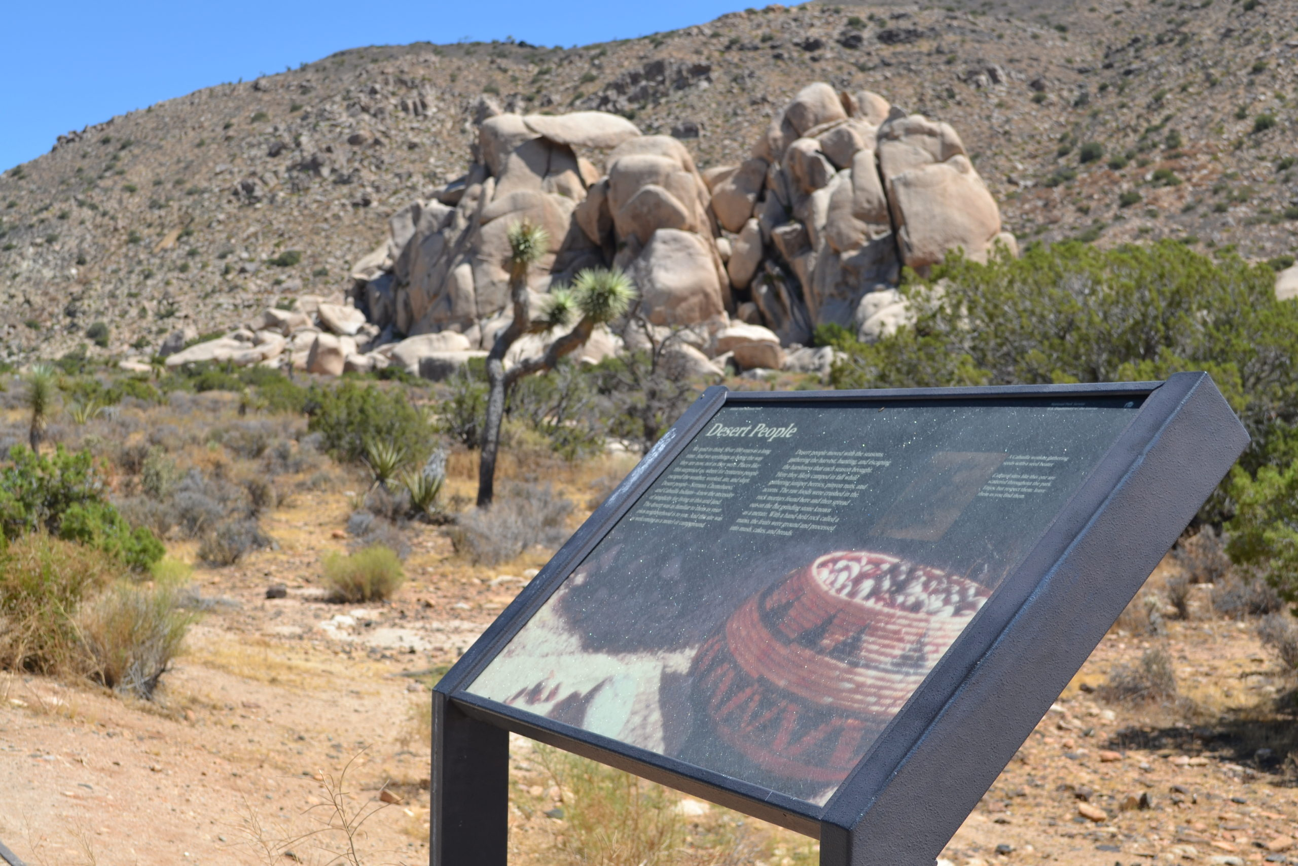 Desert-People-Plaque-Joshua-tree-national-park-adventure-tour-hiking-camping-climbing
